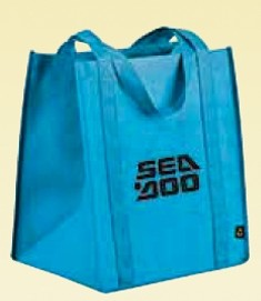 PolyPro Big Grocery Tote Bag